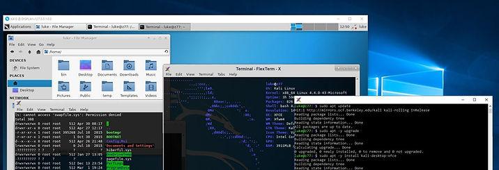 Strip Background - FlexTerm-X Desktop.jp