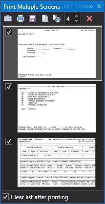 FlexTerm Print Multiple Screens Extension