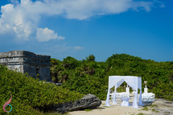 The Ocena Photo Weddings8