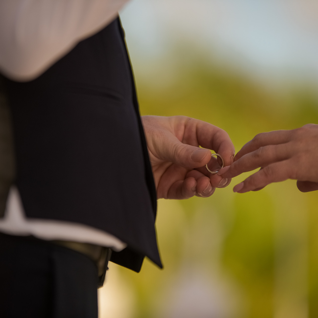 TOP Weddings Riviera Maya