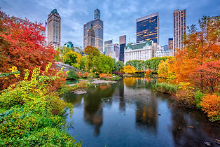 New York City, USA.jpg