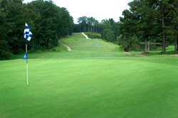Tally Mt. Golf Course