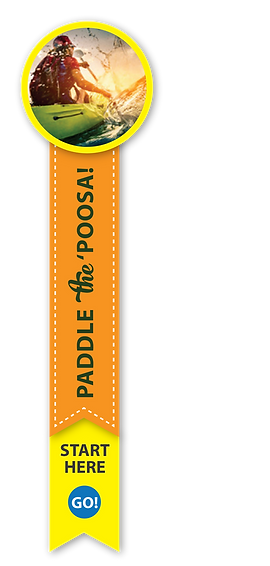 Paddle Site PIN.png