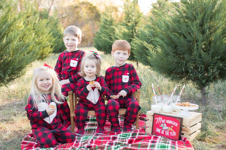 Christmas Tree Farm 12_05_2019-41.jpg