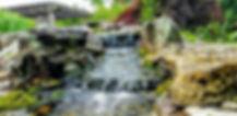 Pond2_edited.jpg