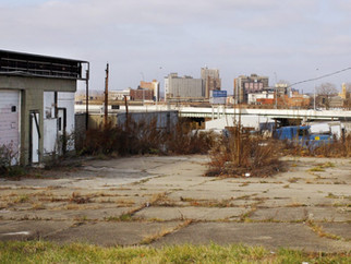 Reducing Crime by Remediating Vacant Lots: The Moderating Effect of Nearby Land Uses