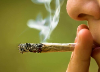 Disentangling Longitudinal Relations Between Youth Cannabis Use, Peer Cannabis Use, and Conduct Prob