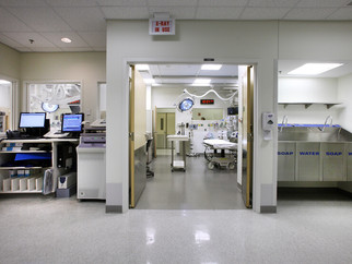 Emergency Department and Hospital-Based Interventions