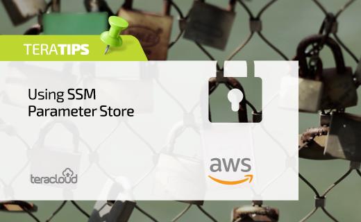 Using SSM Parameter Store