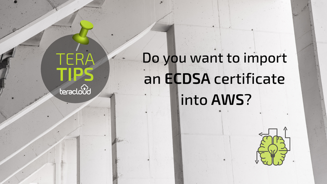 Do you want to import a ECDSA certificate into AWS?