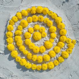 Flower Essesnce & Sacred Geometry Workshop