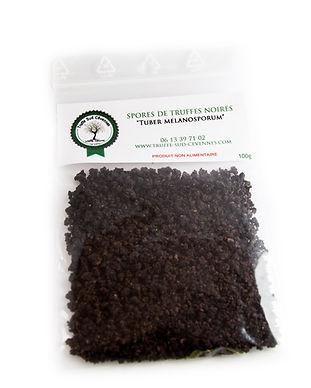 spore-de-truffes