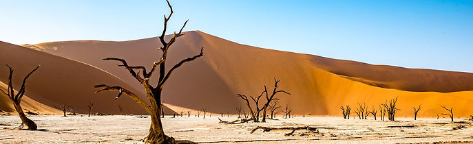 namibia-4790487_1920.jpg