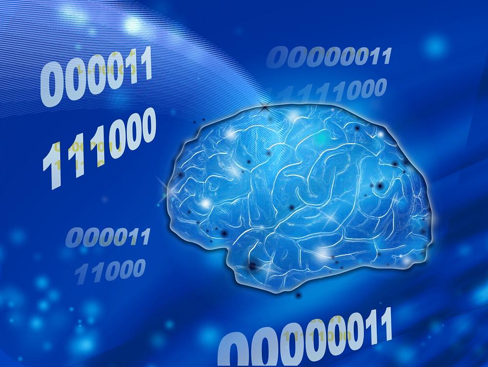 思い込みは脳の最高の省エネシステム