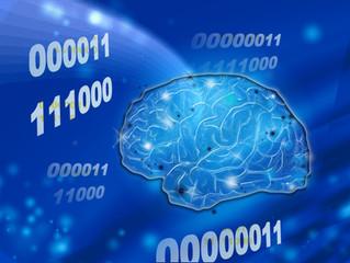 思い込みは、脳の最高の省エネシステム