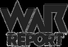 thumbnail_REPORT-copy-3.png