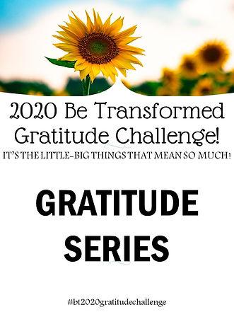 Gratitude Series Pic wbst.jpg