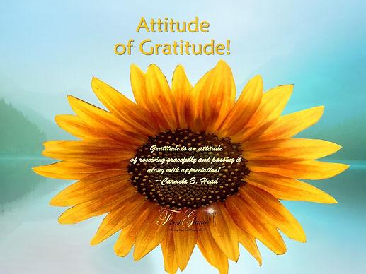 2 Gratitude.jpg