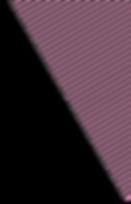斜め線a.png