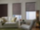 zebra blinds 2.PNG