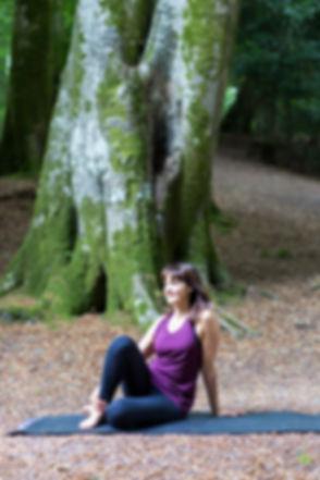lowres-sammie-sitting-in-woods-looking-l