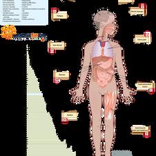 Child Long Covid Symptoms - Survey 1