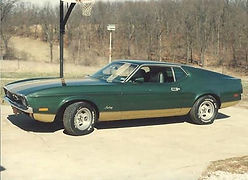 1971 Mustang Fastback.jpg