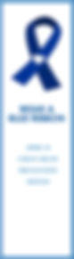 Blue Ribbon Bookmark 3.jpg
