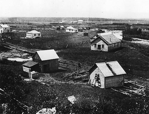 Priddis 1904