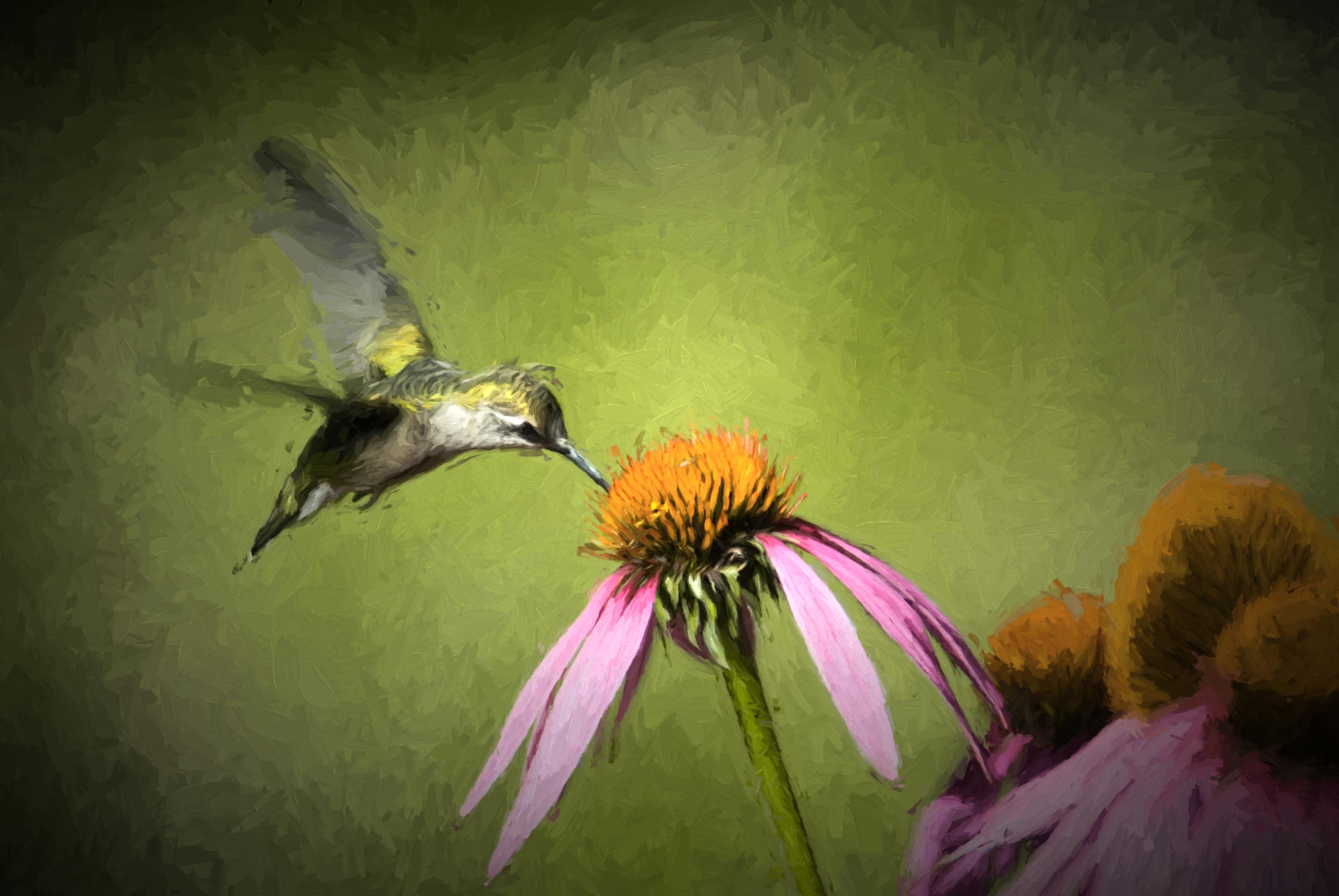 Impressionistic Painted Hummingbird 2014