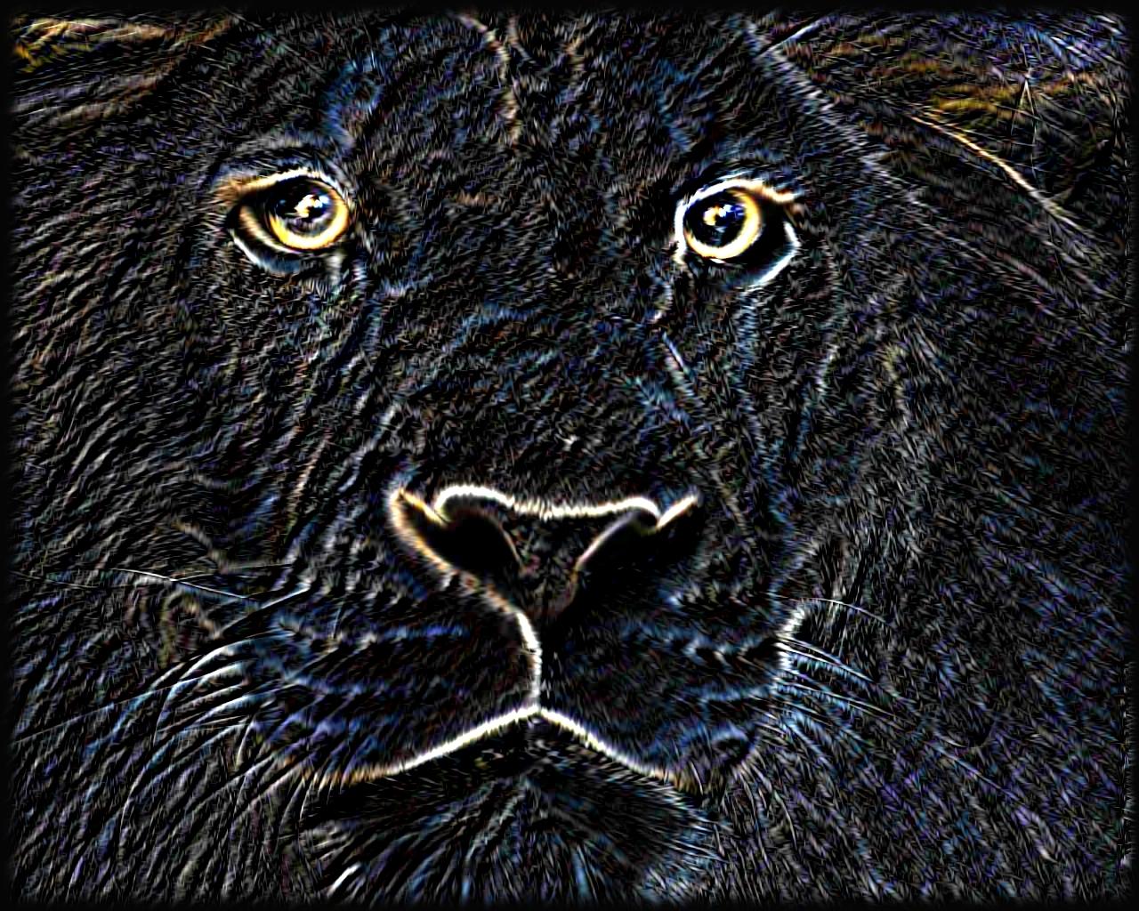 Lion face neon final