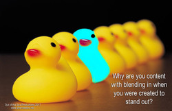 Standing Out ducks