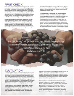 pg 2 The Fruit of the Spirit Religious Newsletter