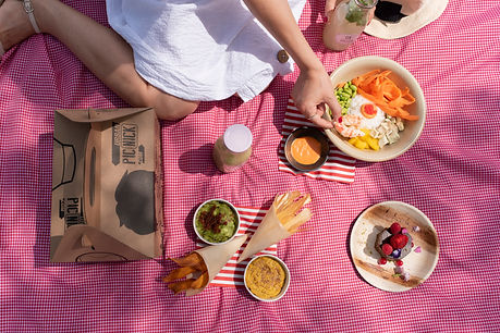 picnic gastronomía naturaleza vegetariano