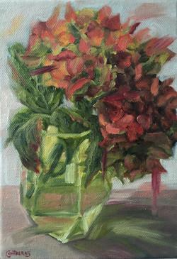 Autumn Hydrangea - £150