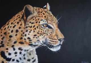 Amur Leopard - £695