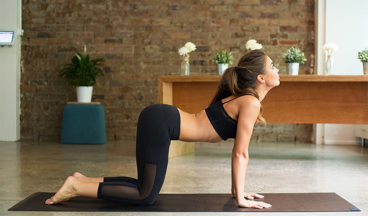 women stretching her back in cats pose