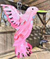 hummingbird, 37b.jpg