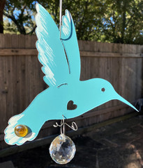 hummingbird, 33d.jpg