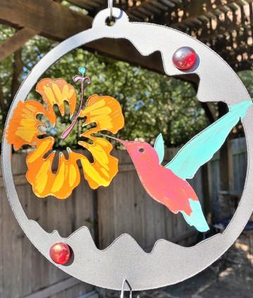 hummingbird, 34.jpg