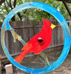 bird, 34d.jpg