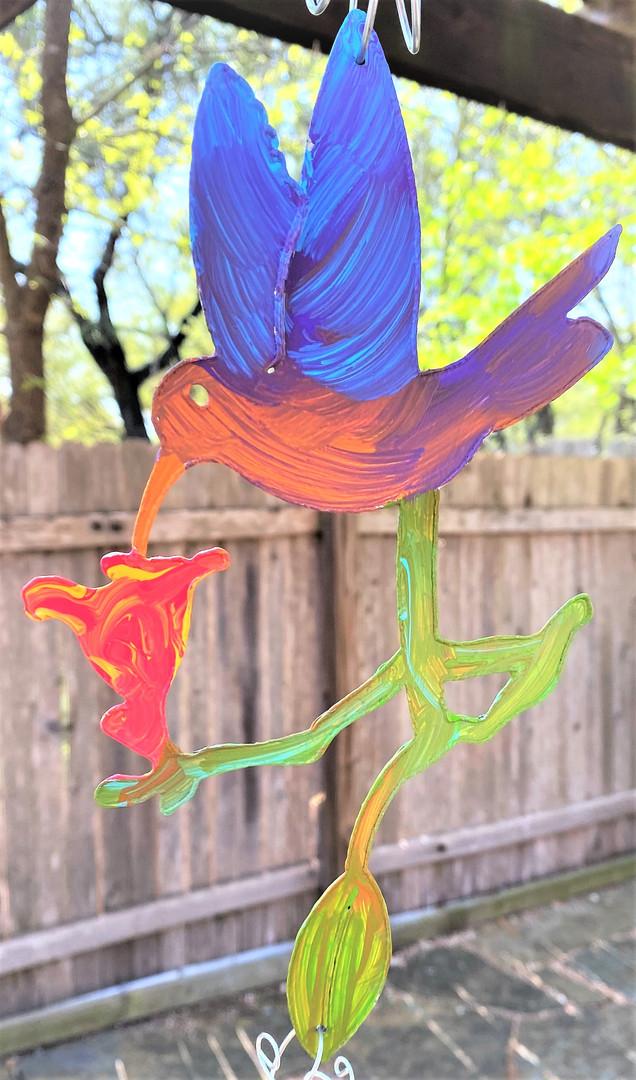 hummingbird, 42e.jpg
