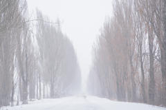 A Cold Light 8