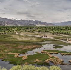 Floodplain near Leh