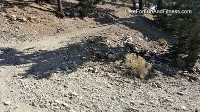 Mt. Baldy, San Antonio, Hollywood sign hike topo map