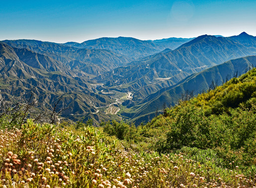 Mt.Lukens Hike