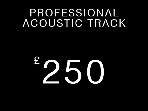 Professional Acoustic Track