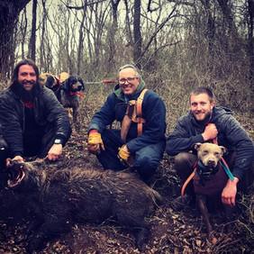 Hog Doggin 2