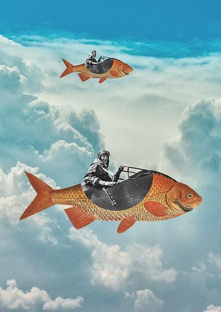 poisson avion.jpg