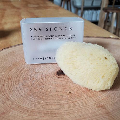 Sea Spong Face